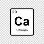 Calciumbedarfsrechner für Welpen